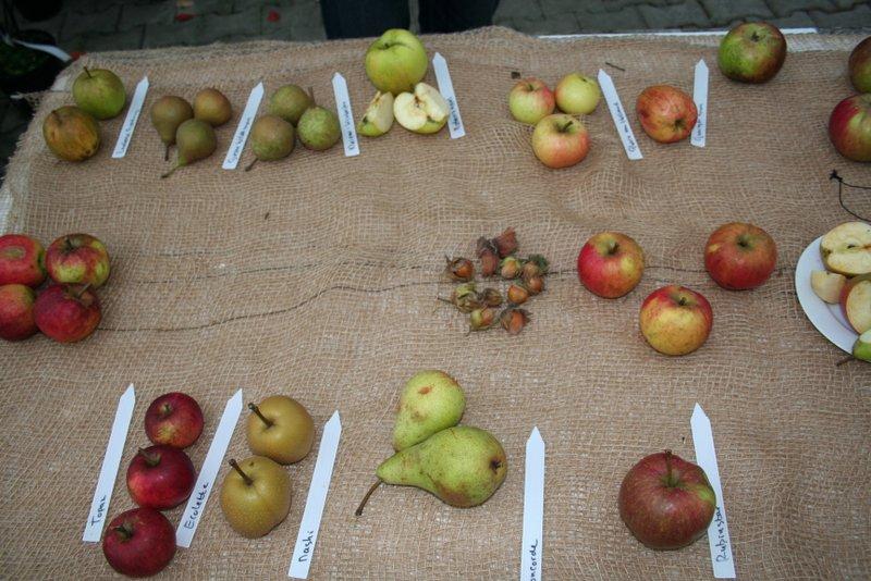 Favoriete fruitbomen