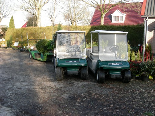 Golfkarretjes voor transport op de kwekerij