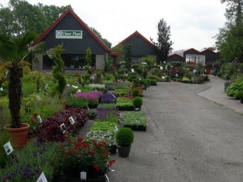 Plantencentrum